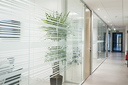 Frosted & Decorative Film - SELECT Window Coatings & Graphics